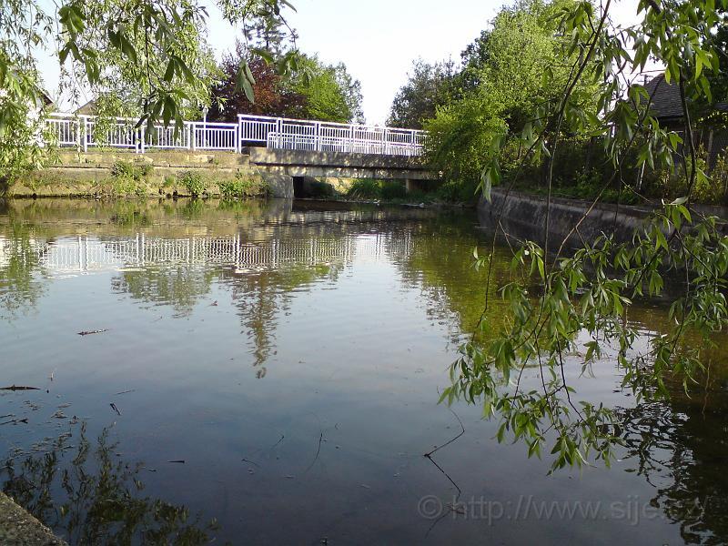 Vrby u Plačického potoka