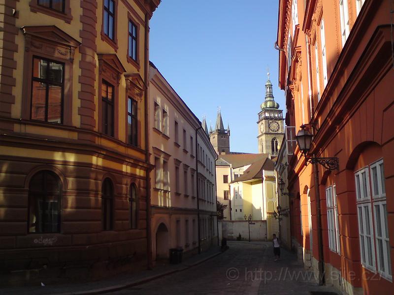 Ulice Zieglerova