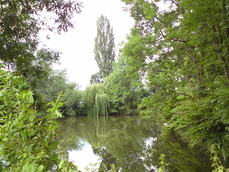 Návesní rybník, Březhrad