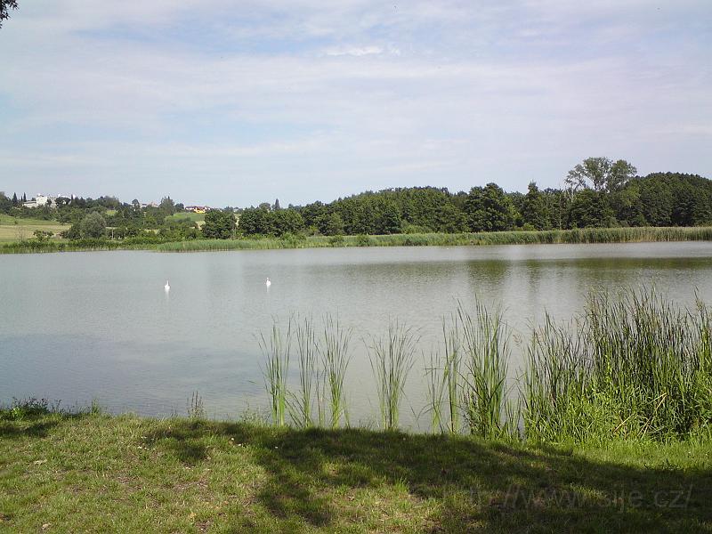 Rybník Roudnička