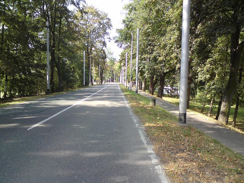 Ulice Brněnská se zelená