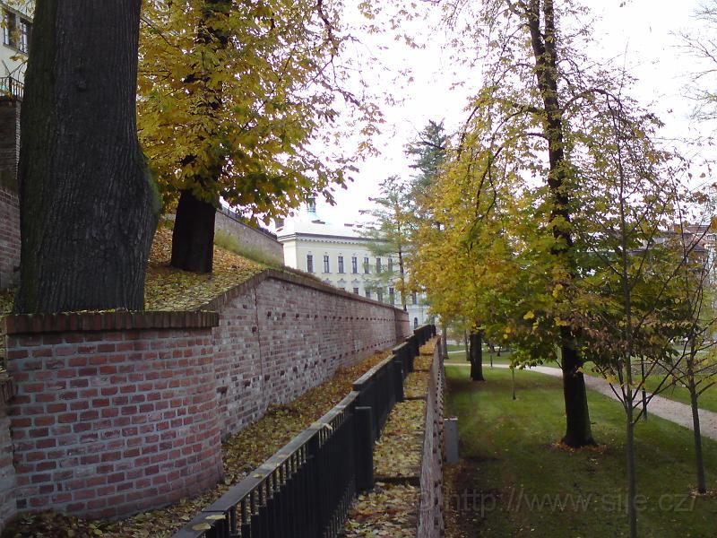 Podzim na opěrné zdi