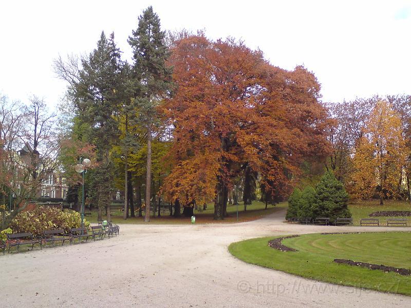 Jiráskovy sady na podzim