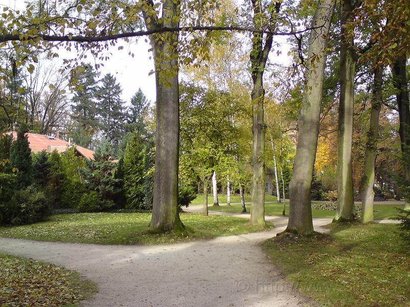 Klikaté podzimní cesty