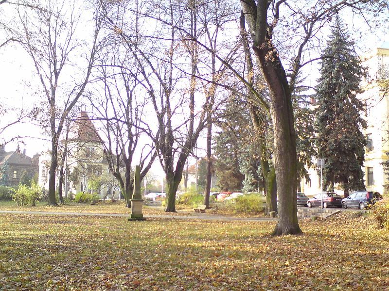 Podzim, sady Víta Nováka