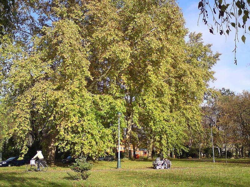 Podzim hýří barvami
