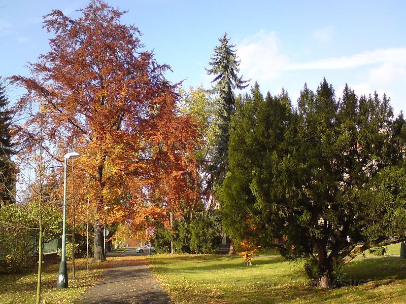 Barvy Kubištových sadů