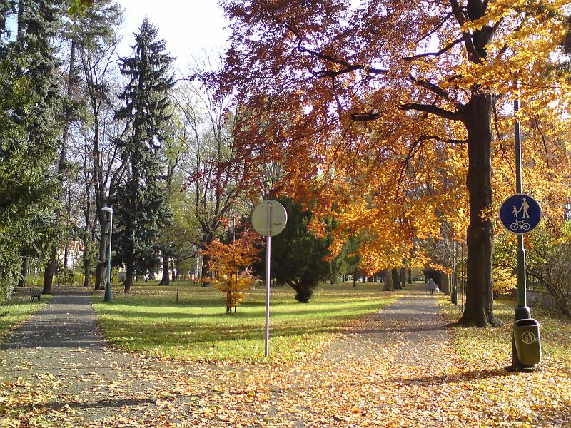 Podzimní rozcestí