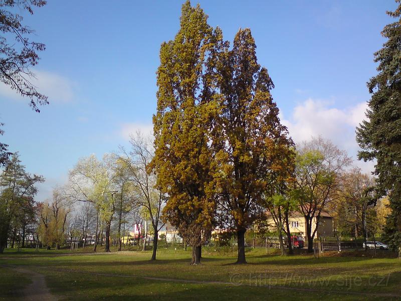 Šimkovy sady, podzim