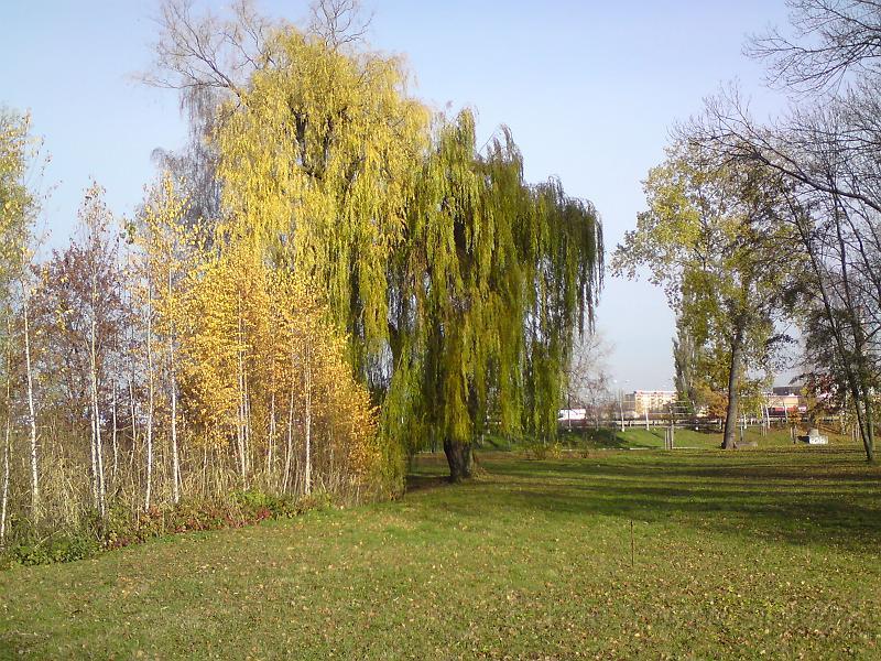 Hra podzimních barev