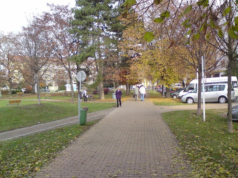 Podzimní Sukovy sady