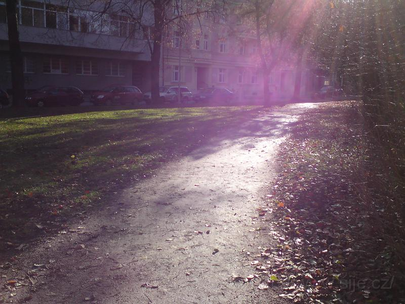 Slunce za Muzeem