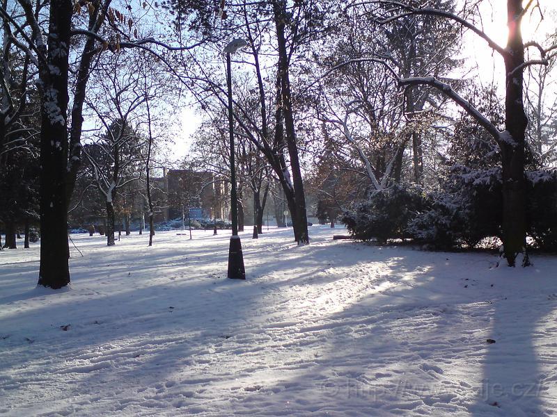 Zimní Kubištovy sady