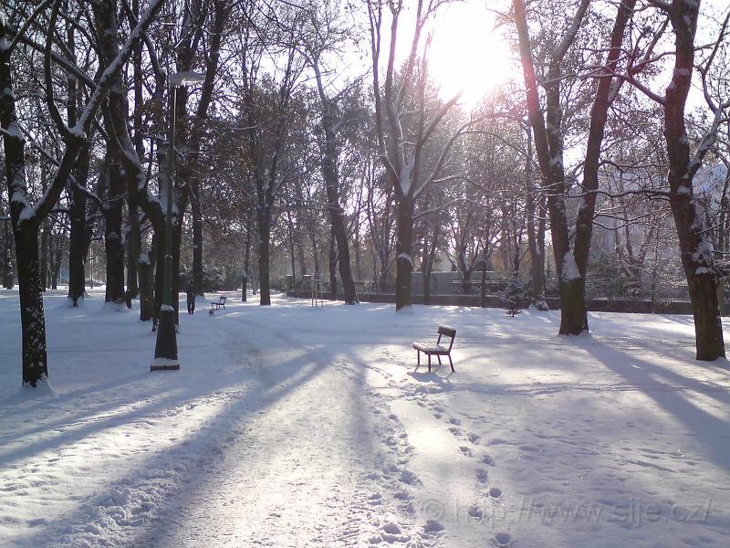Osiřelé lavičky v zimě