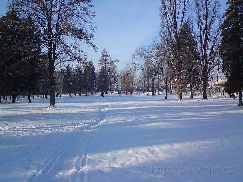 Sněhová pěšina