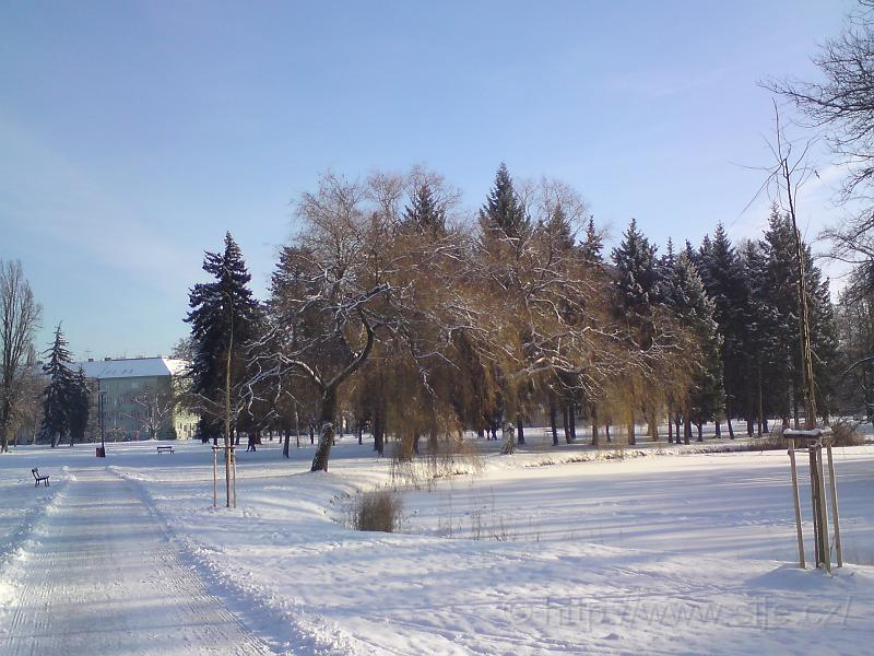 Šimkovy sady, centrum