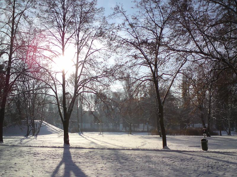 Zimní vhled, Šimk. sady
