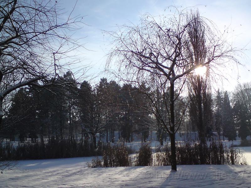Zimní Slunce, Šim. sady