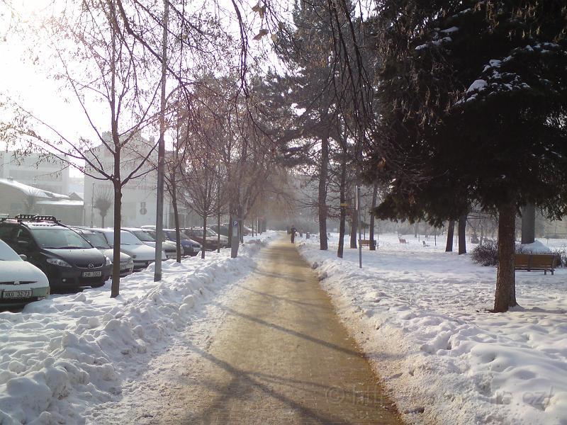 Sukovy sady ve sněhu