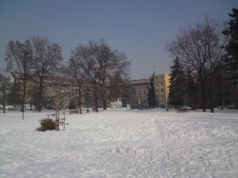 Zimní Sukovy sady