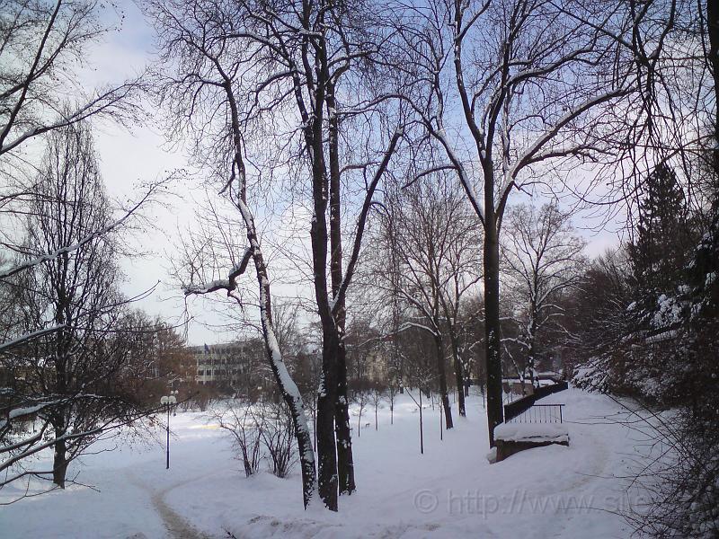 Žižkovy sady v zimě