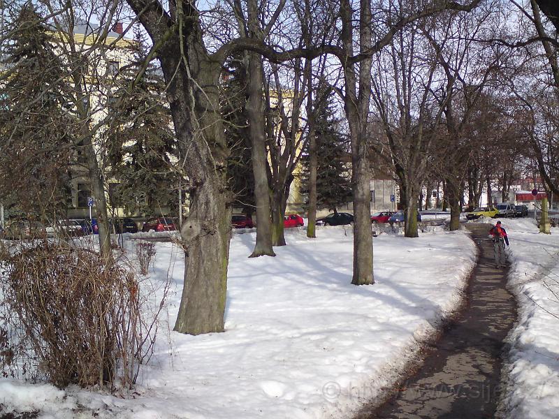 Zimní pěšina přes sady