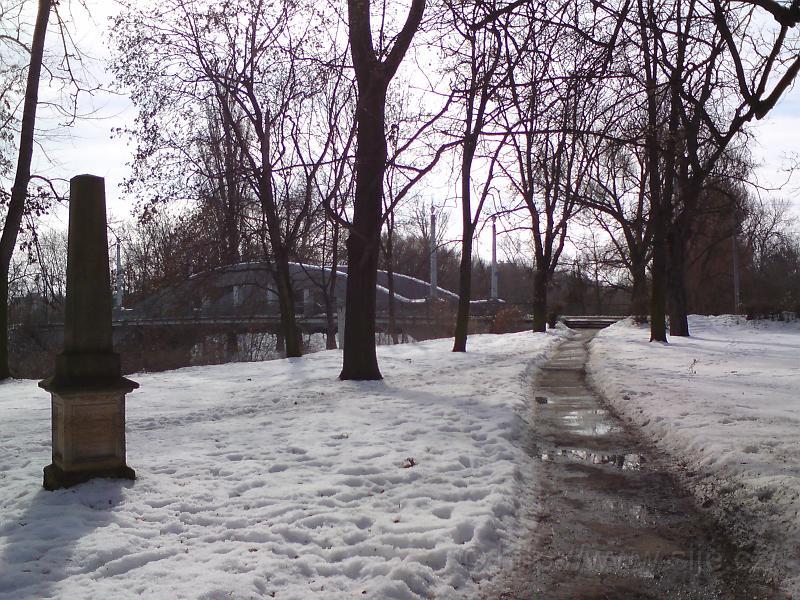 Sady Víta Nováka v zimě