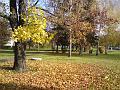 Podzim v Kubištových sadech