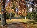 Podzimní barvy Kubištových sadů